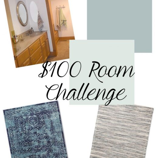 $100 Room Challenge-Bathroom Makeover Update