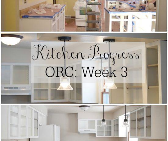 Kitchen Progress: ORC Week 3