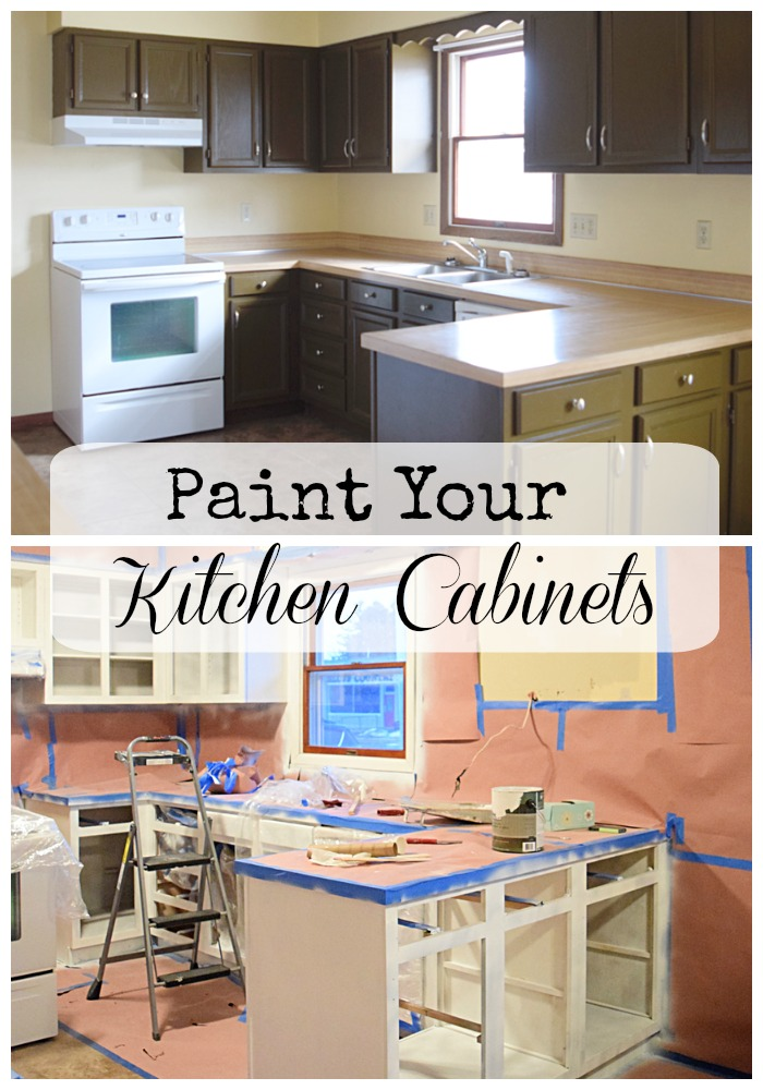 Paint Your Kitchen Cabinets with these tips and tricks | Timeless Creations