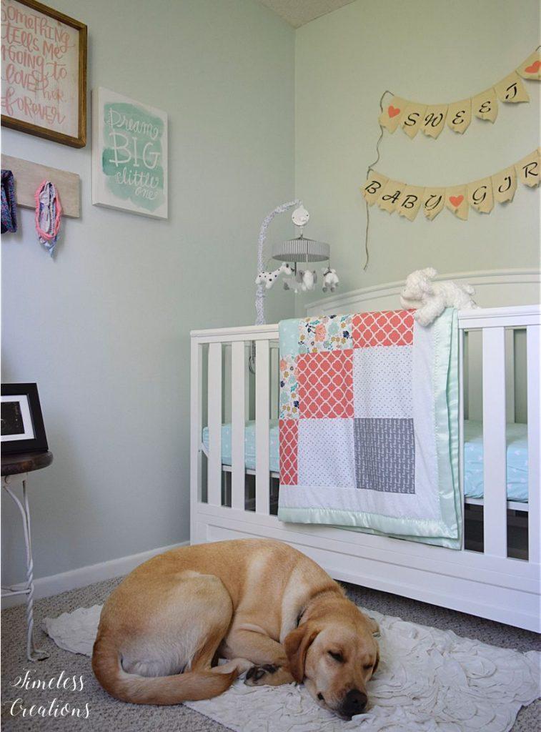 Baby Girl's Nursery Reveal 18