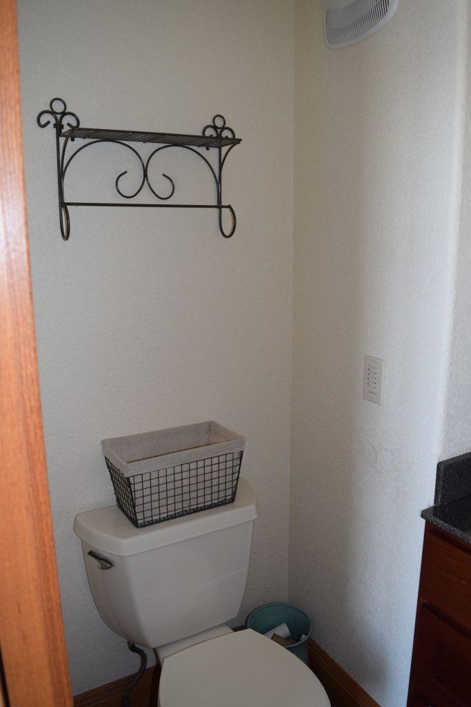 Vicki's Downstairs Bathroom Makeover - $100 Room Challenge 4